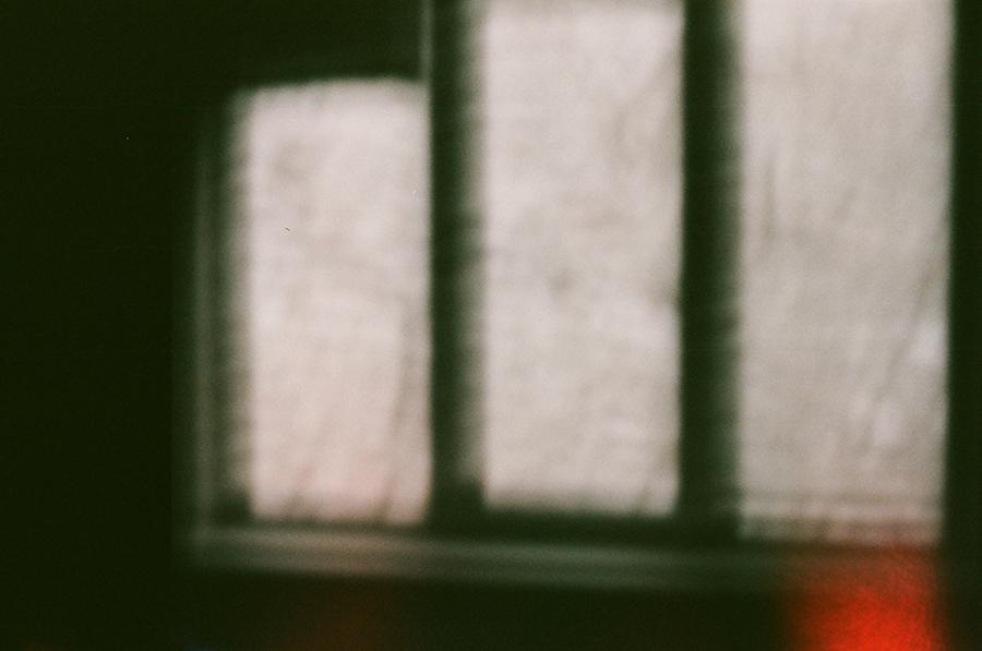 ГОД ВАЖНЫХ ВЕЩЕЙ: недели 8 и 9. Блог Любови Алазанкиной.