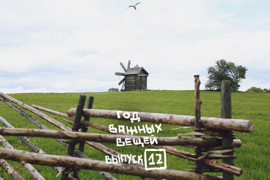 ГОД ВАЖНЫХ ВЕЩЕЙ: выпуск 12. Блог Любови Алазанкиной.